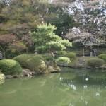 shinjukugoen_etang03
