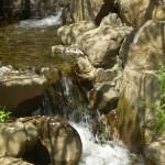 cascade_parc