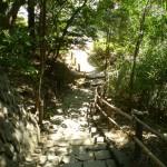 escalier_parc
