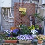 quartier_fleuri_01