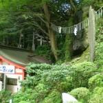 enoshima_escalator