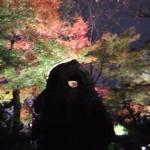 kiyomizu-dera_momiji02
