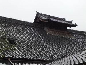 kyoto_pluie02