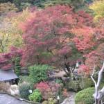 okutama_automne01