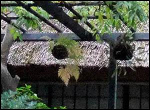 arashiyama_maison_matsukaze_detail01