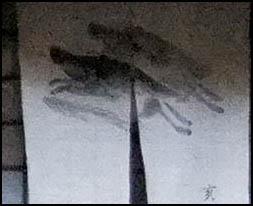 arashiyama_maison_matsukaze_detail02