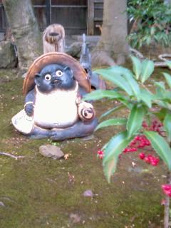 arashiyama_matsukaze_tanuki