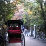 arashiyama_pousse_pousse01