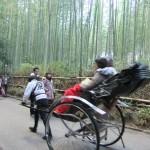 arashiyama_pousse_pousse02