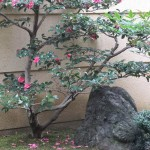 arashiyama_repas_decor