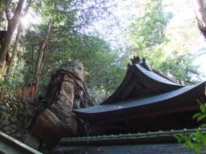 inari_temple