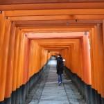 inari_torii01