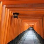 inari_torii02