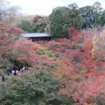 tofuku-ji_pont03