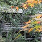 tofuku-ji_pont04