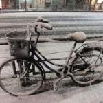 snow_velo