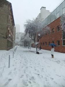 neige_paris_rue_pietone