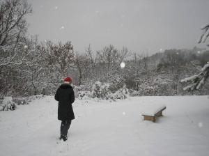 noel_2010_siro_neige1