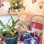 sapin_cadeaux01