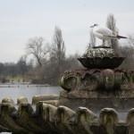kensington_park_oiseau03