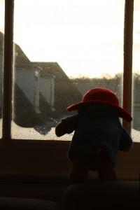 paddington_window