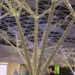 westfield_trees_02