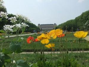 jardin_des_plantes_batiment01