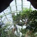 jardin_des_plantes_serre_grotte02