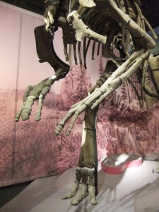 dans_lombre_des_dinosaures02